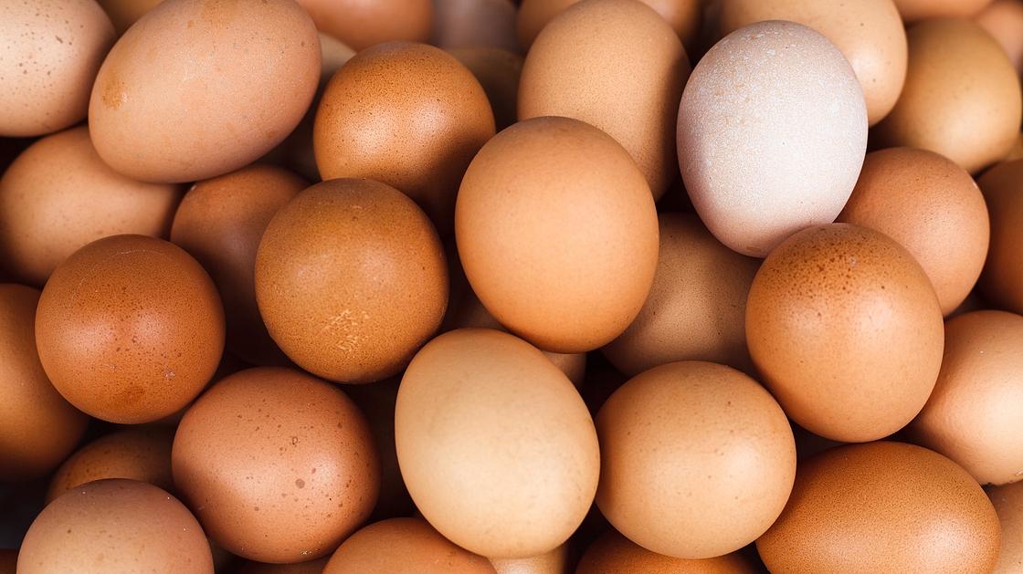 Montako Kananmunaa Päivässä